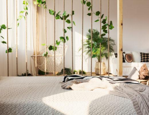 Rostliny v ložnici? Ano, či ne?